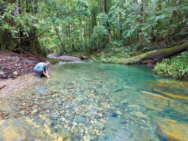 Rosewood Creek, Dorrigo