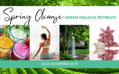 Spring Cleanse Health Retreat
