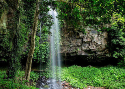 photo of waterfall at Dorrigo National Park