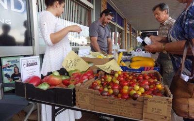 What's On in Dorrigo (Summer)